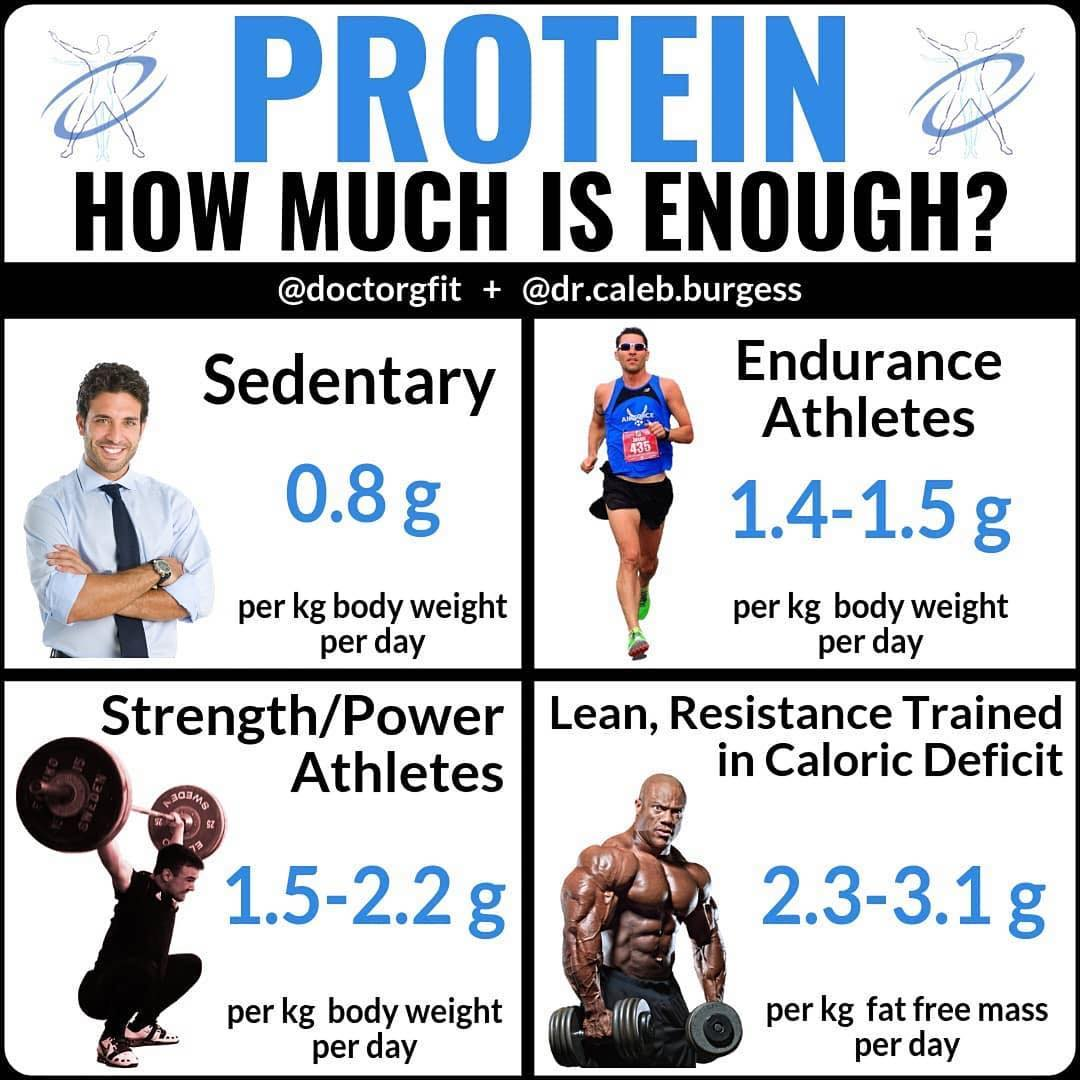 protein-how-much