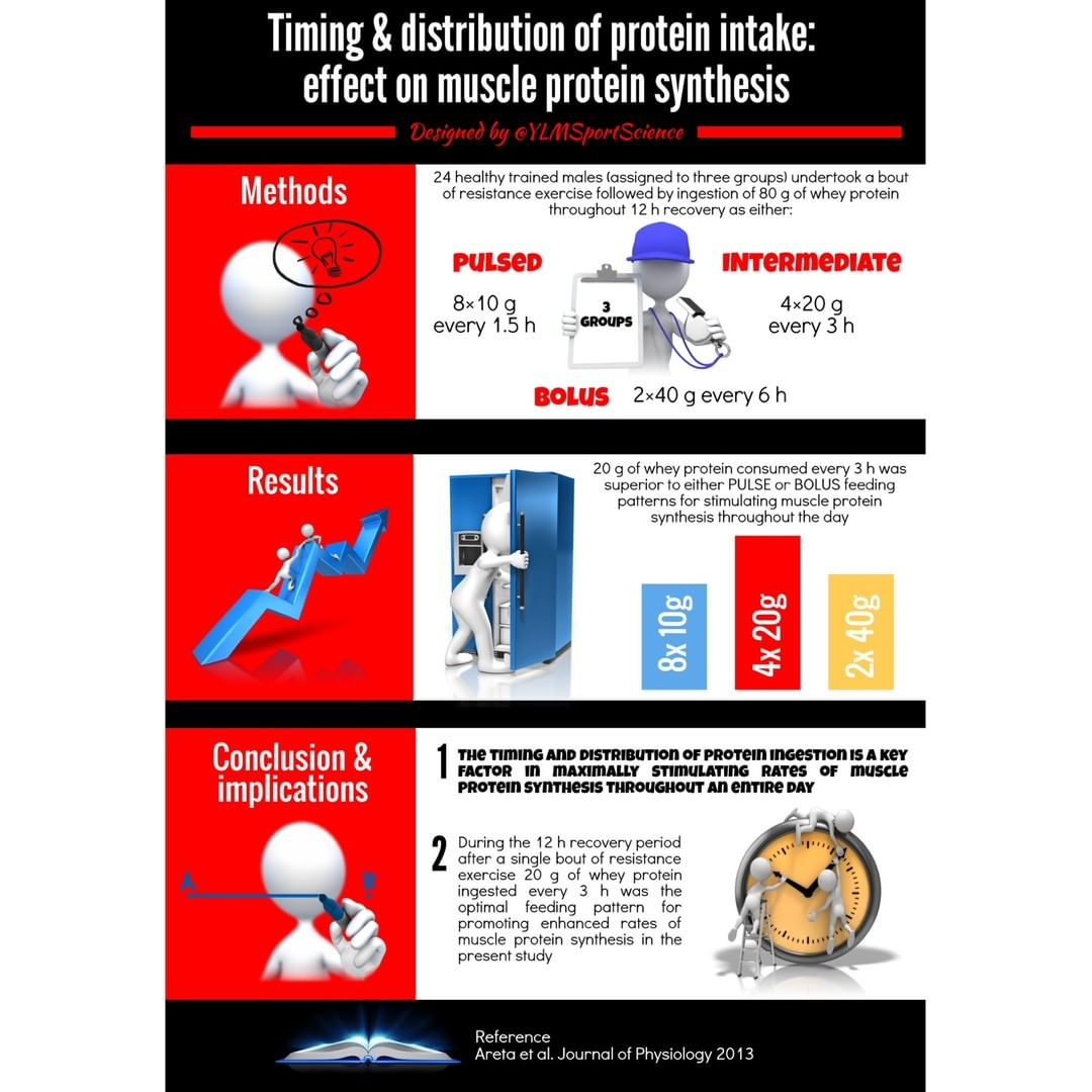 protein-timing