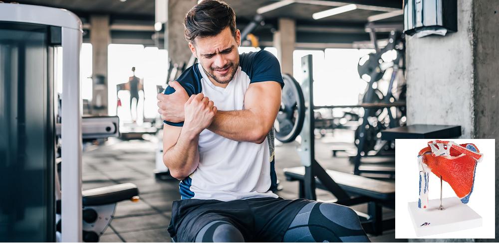 Zdravé a silné ramená – Rozhovor pre časopis Imunita